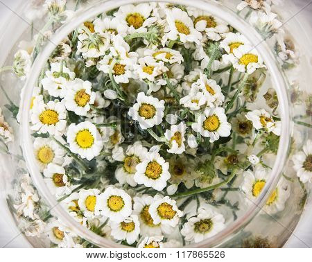 Arangement With Daisy Flowers In The Glass Bowl, Birthday Gift