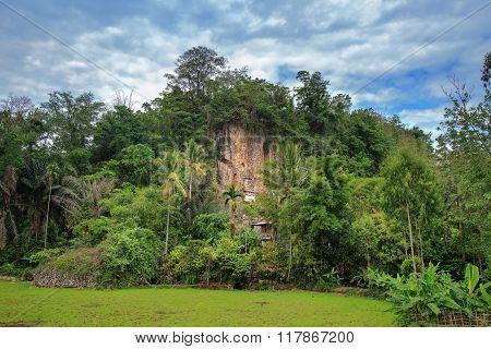 Suaya Is Cliffs Burial Site In Tana Toraja, South Sulawesi, Indonesia
