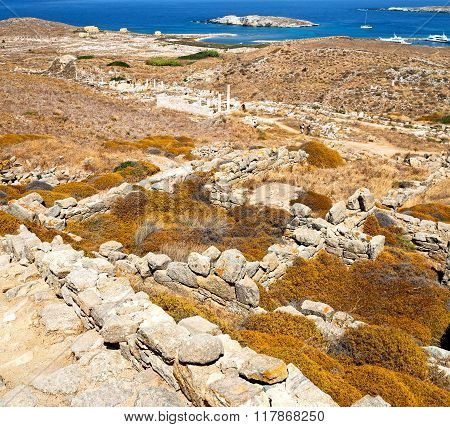Antique  In Delos Greece The Historycal Acropolis And Old Ruin Site