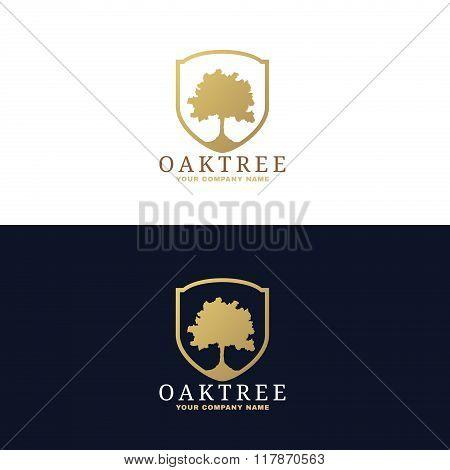 Gold And Dark Blue Oak Tree Logo Vector Design