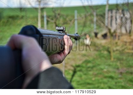 Hunter shooting wild hens Hunter aim his target Jaeger aim on his hunting ground Poacher shooting Hunter aim with rifle gun weapon air gun poster