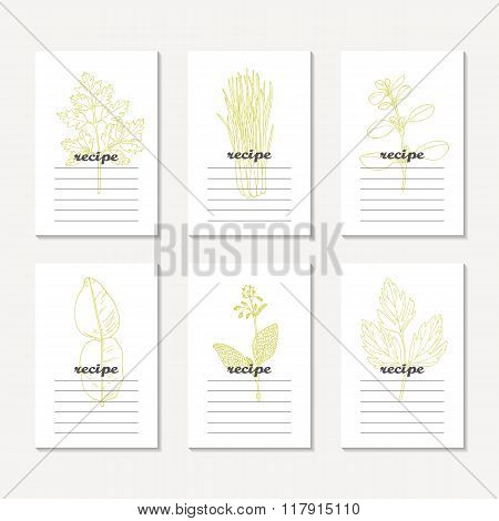 Recipe cards collection with hand drawn spicy herbs. Sketched chervil, lovage, lemongrass, marjoram,