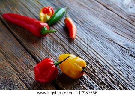 Mexican hot chili peppers colorful mix habanero poblano serrano jalapeno sweet on wood