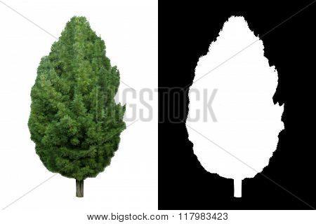 Decorative evergreen tree 1