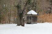 Outhouse in winter.  Sleeping Bear Dunes National Lakeshore poster