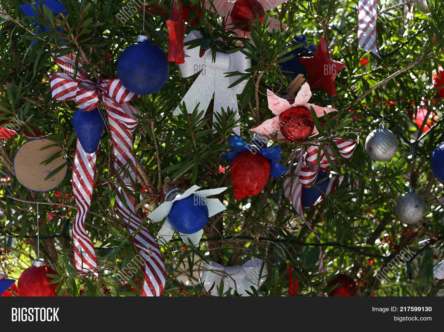Patriotic Christmas Lights.Patriotic Christmas Image Photo Free Trial Bigstock