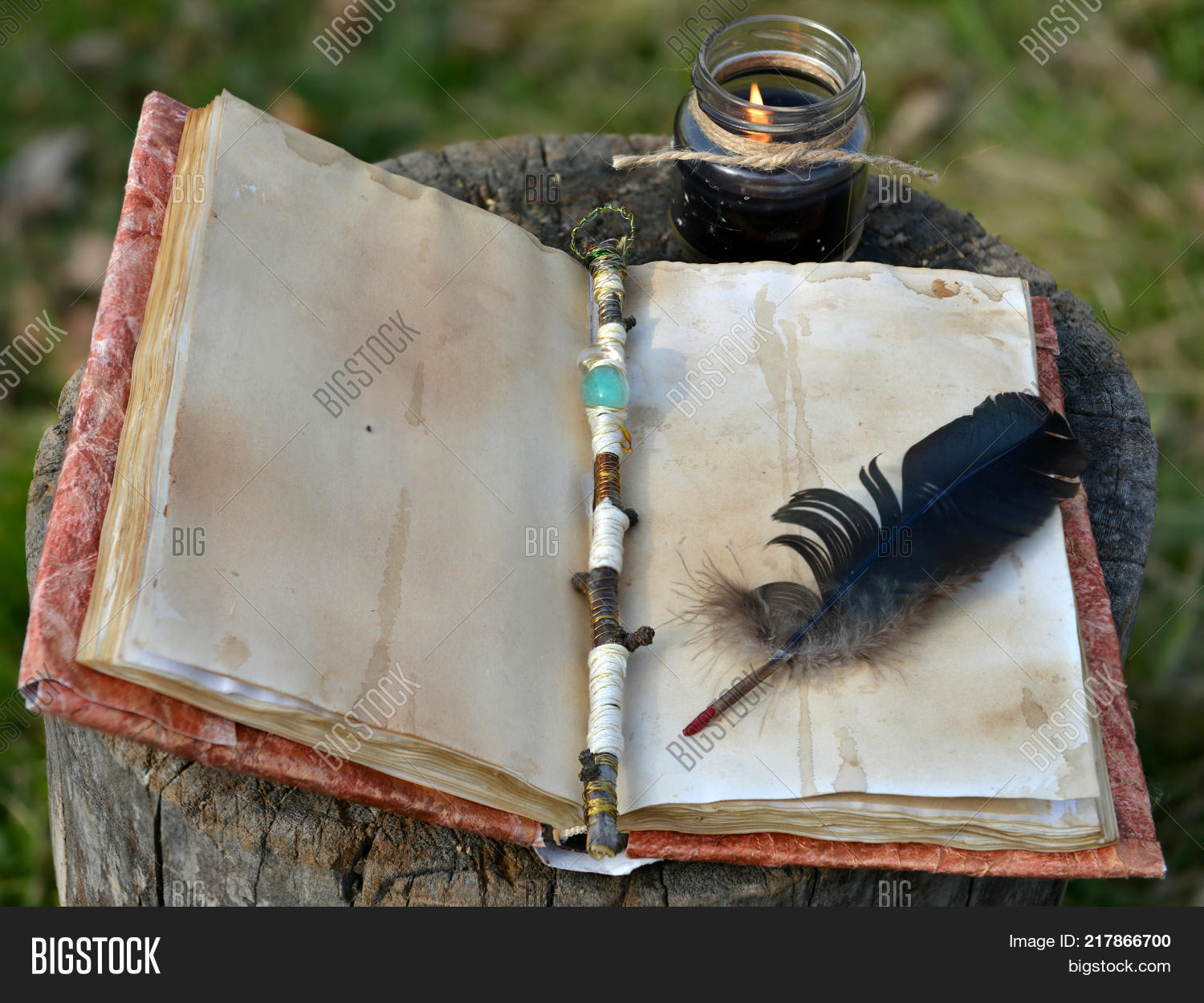 Old Book Empty Pages, Image & Photo (Free Trial)   Bigstock