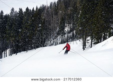 A skier is skiing down the slope in a forest. Man is wearing red jacket. It's snowing.