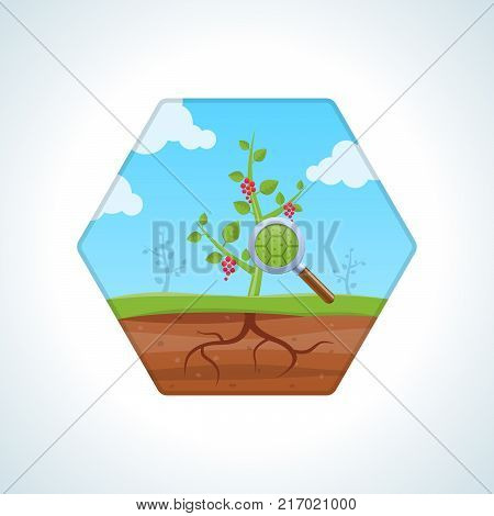 Education, biology, botany and natural history, study of nature. Study, investigation of structure, composition of plant. Knowledge, laboratory study, schooling scientific study Vector illustration poster