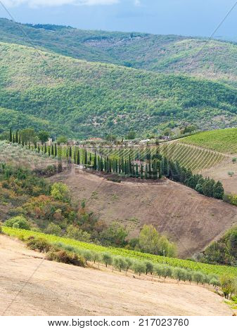 Typical Tuscan lanscape in the surrounding area of Siena, Italy