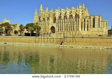 Palma Cathedral and water
