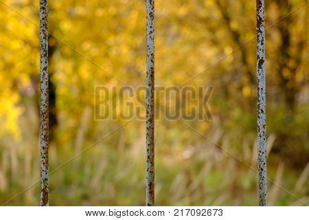 Metal fence fence from the outside world