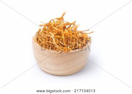 Dried cordyceps militaris isolated on white background. chong cao dong chong cao poster