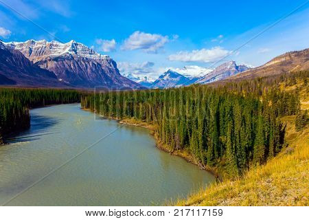 Warm September in the mountains of Canada. On the shores of the Abraham lake there are autumn forests. Concept of ecological and active tourism