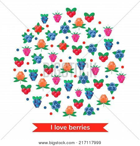 vector illustration. wild forest berries. cranberry, raspberry, blueberry BlackBerry stone bramble cloudberries