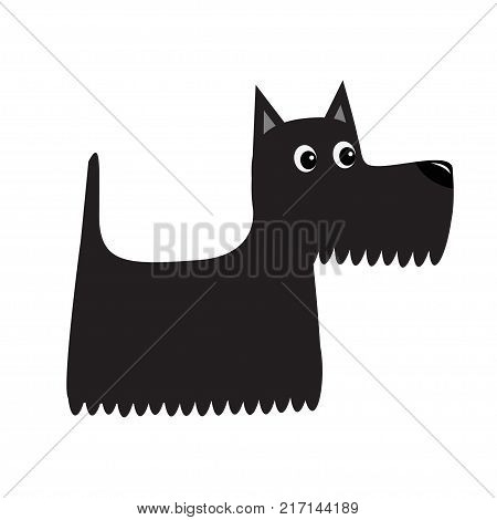 Scottish terrier black dog. Scottie puppy. Cute cartoon character. Pet animal collection. Adopt concept. Flat design. White background. Isolated. Vector illustration