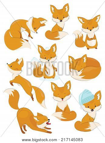 Set of cartoon foxes. Collection of cute foxes. Vector illustration for children.