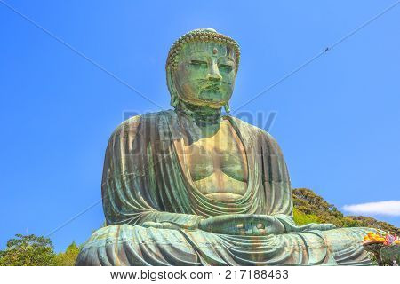 Big Buddha or Daibutsu on blue sky, one of the largest bronze statue of Buddha Vairocana. Kotoku-in Buddhist Temple in Kamakura from old Japan, cast in 1252.