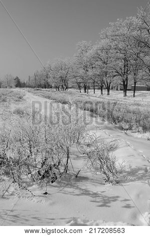 Snowy village street on a sunny winter day on a background of the sky. B&W photo