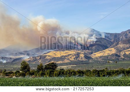 Wildfire burns in California mountains.  Thomas Fire above city of Fillmore in Ventura County