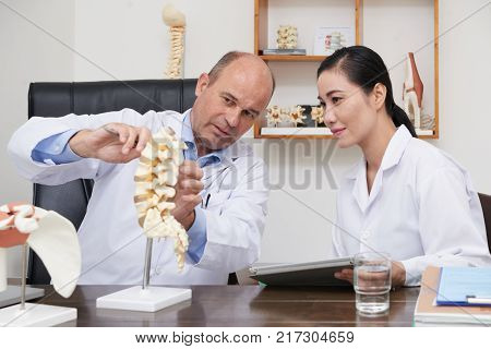Doctor showing model of spine to the nurse to explain disease