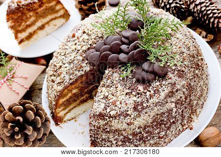 Chocolate hazelnut cake for Christmas holidays. Homemade layered biscuit cake with chocolate cream decorated with chocolate chips and nut crumbs