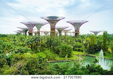 MARINA BAY SINGAPORE - JAN 20 2017: Landscape of Gardens by the bay in Singapore.