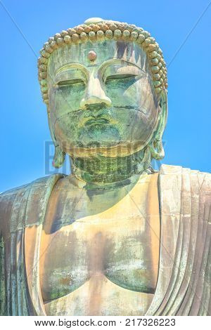 Vertical shot of Big Buddha or Daibutsu on blue sky, one of the largest bronze statue of Buddha Vairocana. The monumental great buddha in Kotoku-in Temple is one of main attractions in Kamakura, Japan