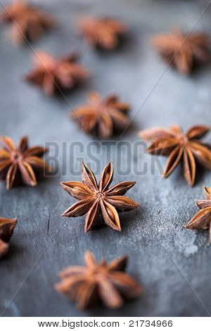 Star Anise - Shallow Dof