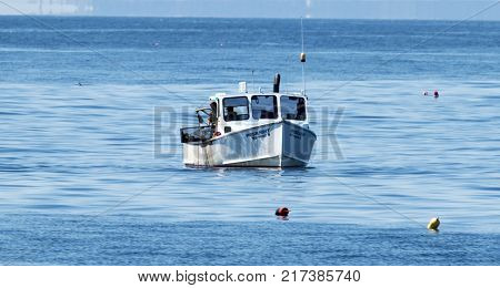 Bar Harbor Maine USA - 31 July 2017: A lobster fisherman is out in the Atlantic Ocean off of the coast of Maine pulling up lobster traps and retrieving lobsters to sell at market on a summer afternoon.