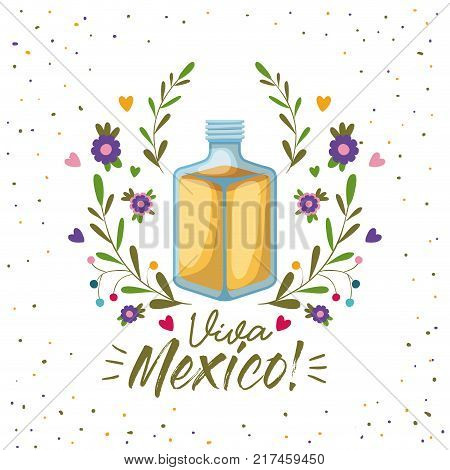 viva mexico colorful poster with tequila bottle vector illustration