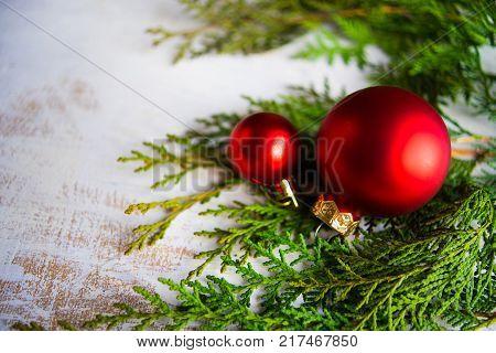 Christmas Holiday Card