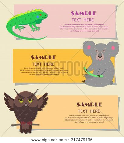 Vector illustration of bright green iguana, gray koala and brown owl with spread wings. Concept of three horizontal beasts on kids cards. Colorful teaching typography for children cartoon style.