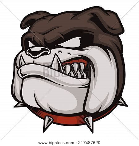 Vector illustration with angry bulldog. Logo with head of dog. Isolated on white background.