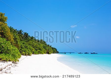 Beautiful nature and white sandy beach on Maldives island, perfect getaway for your vacations