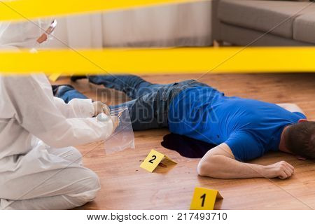 investigation and forensic examination concept - criminalist collecting evidence of murder of man at crime scene fenced by police tape (staged photo)