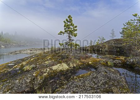 The shores of Lake Ladoga in a thick haze. Karelia Russia. Early June poster