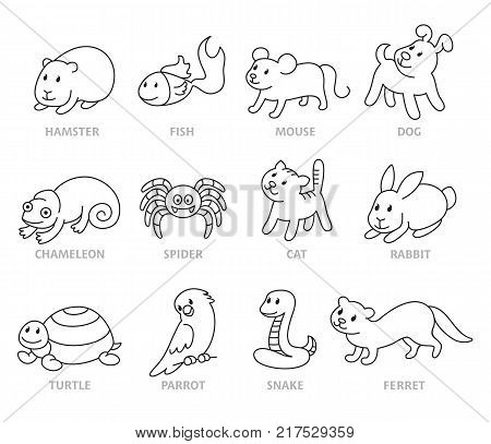 Pet shop set types of pets cartoon illustrations animals in line style. Logo pictogram infographic elements