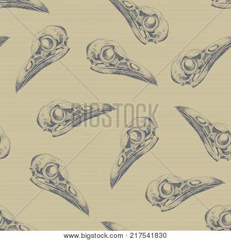 Vintage vector pattern with skulls raven. Gold and black.
