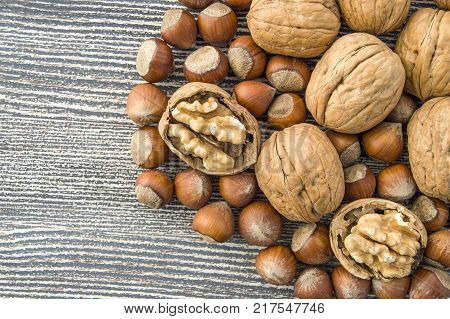 standing side by side in separate plate of shelled hazelnuts and shelled walnuts pictures,walnut and shelled hazelnut pictures side by side in a separate plate