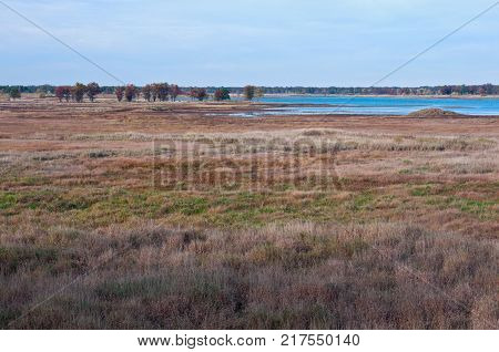 sedge meadow woodlands and wetlands at necedah national wildlife refuge in juneau county wisconsin