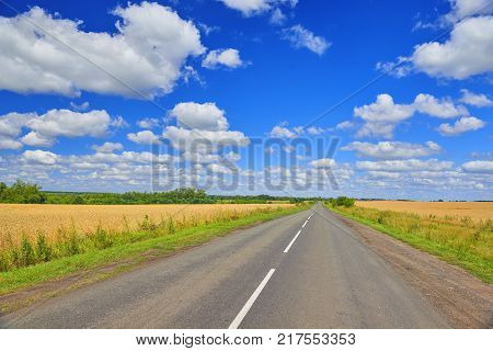 Summer view on golden wheat fields and countryside field road. Kursk Krasnodar region country road among golden wheat fields. Road to horizon. Horizon skyline road way path