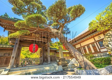 Kamakura, Japan - April 23, 2017: main gate entrance of Hase-dera Temple or Hase-kannon, one of Buddhist temples in Kamakura, Kanagawa Prefecture, famous for a massive wooden statue of Kannon.