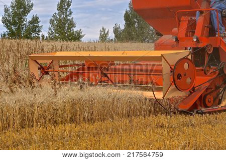 An old self propelled combine is in the process of harvesting wheat.