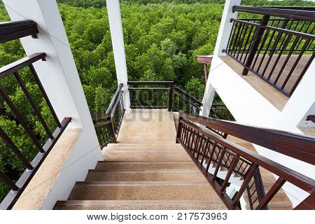 Spiral staircase in sightseeing tower mangrove forest poster