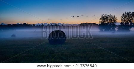 Evening Fog In European Field