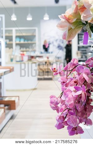 Orchid flowers on the background of shop space