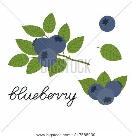 Ripe blueberries on a white background. Berries with stems and green leaves. Vector illustration isolated on white background in flat style. Set blueberry