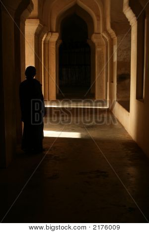 A Shadow In The Palace