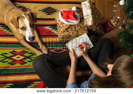 Young female person draws a funny holiday stick figure on a greeting card and writes congratulation on happy winter Christmas holidays. Girl sits with pet dog and signs postcard next to decorated fur tree and pile of new year presents packaged in beautifu